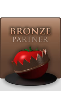 Upgrade to Bronze Partner